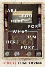 ARE-YOU-HERE-by-Brian-Booker-9781942658122